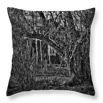 Into The Wilderness Throw Pillow by Jerry Cordeiro