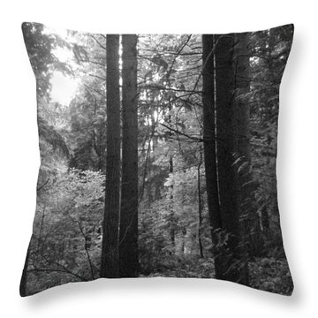 Into The Wood Throw Pillow by Kathleen Grace