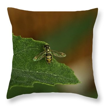 Iridescent Fly 1 Throw Pillow