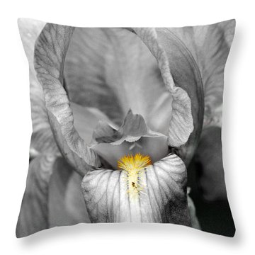 Iris - Bw Throw Pillow by Larry Carr