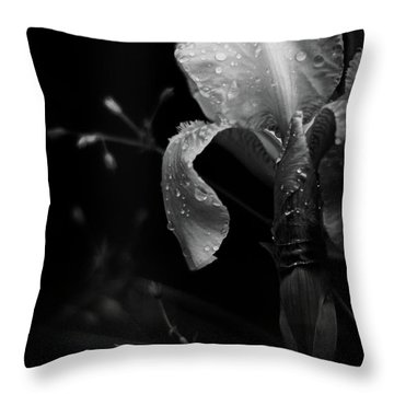 Iris Adorned Throw Pillow