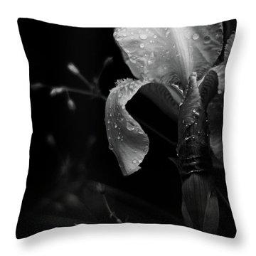 Iris Adorned Throw Pillow