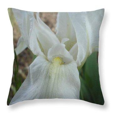 Throw Pillow featuring the photograph Iris Angel by Kerri Mortenson
