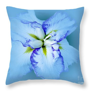 Iris In Blue Throw Pillow by Carol F Austin