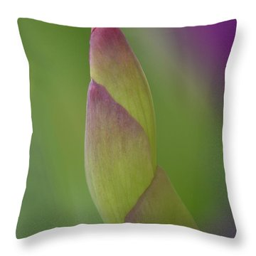 Iris-istible 2 Throw Pillow by JD Grimes
