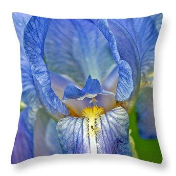 Iris Throw Pillow by Larry Carr