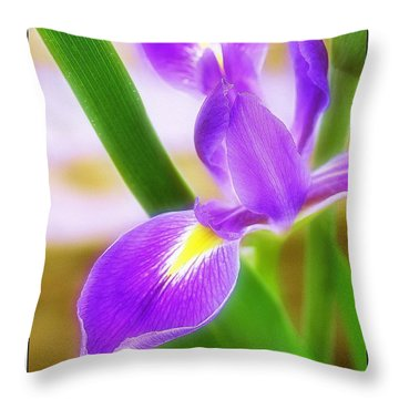 Iris On Pointe Throw Pillow by Judi Bagwell
