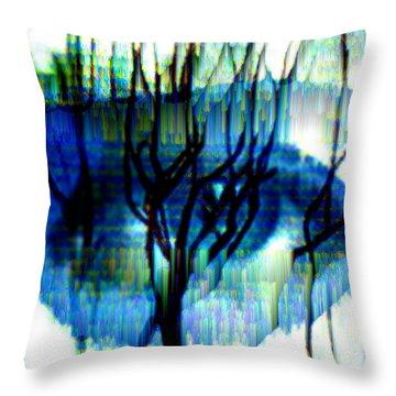 Iris Throw Pillow by Seth Weaver
