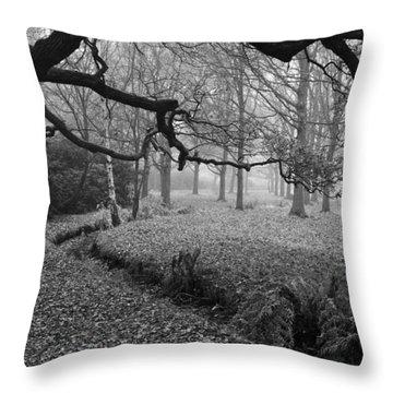 Throw Pillow featuring the photograph Isabella Plantation by Maj Seda