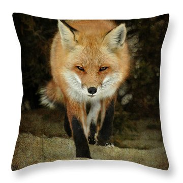 Island Beach Fox Throw Pillow