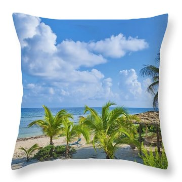 Island Beauty Throw Pillow by Stephen Anderson
