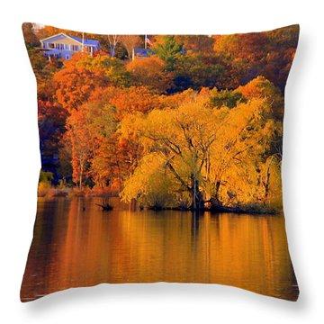 Island  In Fall Throw Pillow