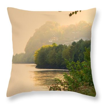 Islands In The Stream II Throw Pillow