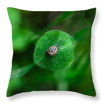 Islet Throw Pillow