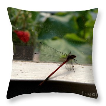 It's Always Greener Throw Pillow by Lainie Wrightson