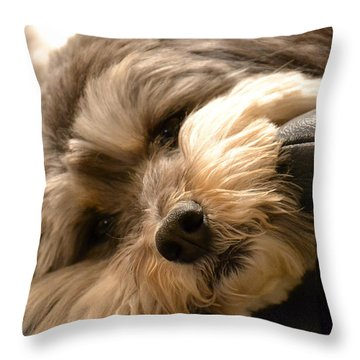 It's Been A Long Day Throw Pillow