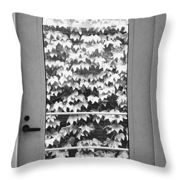 Ivy Door Throw Pillow by Anna Villarreal Garbis