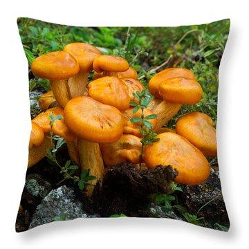 Jack Olantern Mushroom 6 Throw Pillow by Douglas Barnett