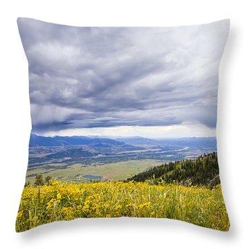 Jackson Hole Rain Clouds Throw Pillow