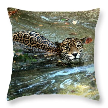 Throw Pillow featuring the photograph Jaguar In For A Swim by Kathy  White