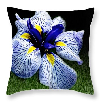 Japanese Iris Ensata - Botanical Wall Art Throw Pillow by Carol F Austin