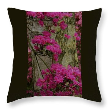 Japanese Painting Throw Pillow by Manuela Constantin
