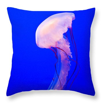 Throw Pillow featuring the photograph Jellyfish by Shane Kelly