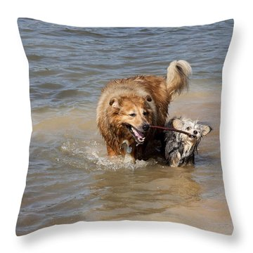 Jesse And Gremlin Sharing Throw Pillow by Jeannette Hunt