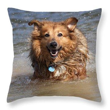 Jesse Throw Pillow
