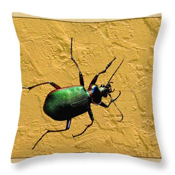 Throw Pillow featuring the photograph Jeweltone Beetle by Debbie Portwood