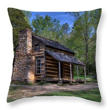 John Oliver Cabin Throw Pillow