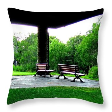 Throw Pillow featuring the photograph Jollycut Park by Danielle  Parent