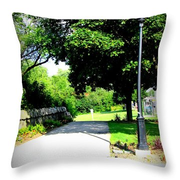 Throw Pillow featuring the photograph Jollycut Park Walk by Danielle  Parent