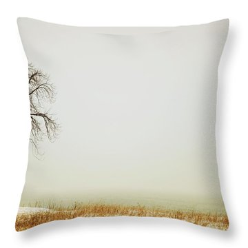 Jordan, Ontario, Canada A Tree Along Throw Pillow by Pete Stec