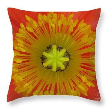 Throw Pillow featuring the photograph Joyful by Tina Marie