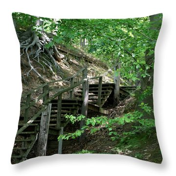 Jug Bay Secrets Throw Pillow by Valia Bradshaw