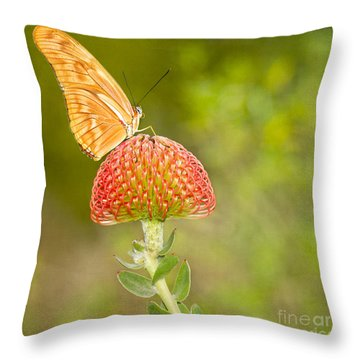 Julia Longwing Butterfly On Exotic Flower Throw Pillow