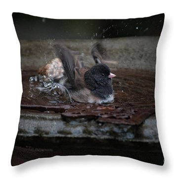 Throw Pillow featuring the digital art Junco In The Birdbath by Carol Ailles
