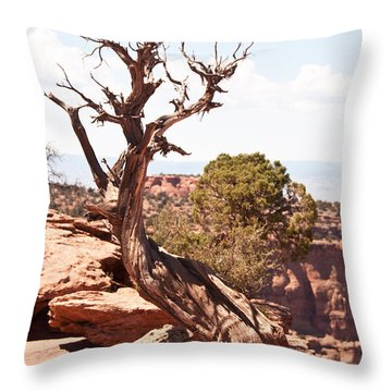 Juniper - Colorado National Monument Throw Pillow by Bob and Nancy Kendrick
