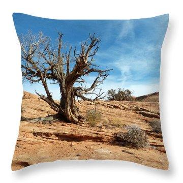 Juniper On Slickrock Throw Pillow by Bob and Nancy Kendrick