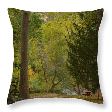 Throw Pillow featuring the photograph Junipine by Tom Kelly