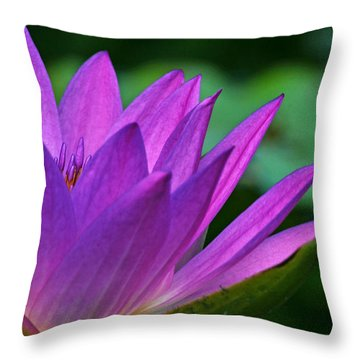 Just A Dream Throw Pillow