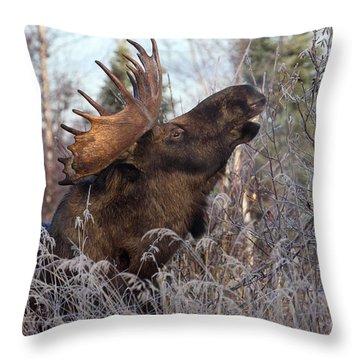 Just A Little Bit Higher Throw Pillow