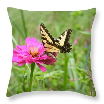 Just A Taste Throw Pillow