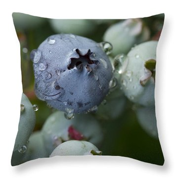 Just Blue Throw Pillow by Carrie Cranwill