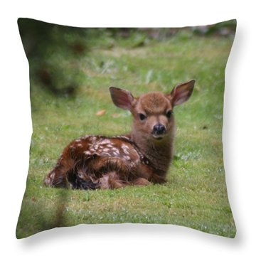 Just Born Bambi Throw Pillow by Kym Backland