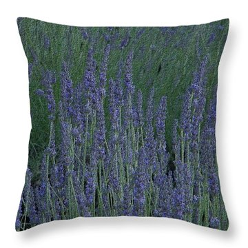 Just Lavender Throw Pillow by Manuela Constantin