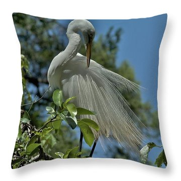 Throw Pillow featuring the photograph Just So by Joseph Yarbrough