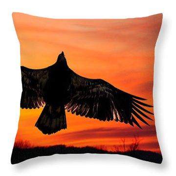Throw Pillow featuring the photograph Juvenile Sunset  by Randall Branham