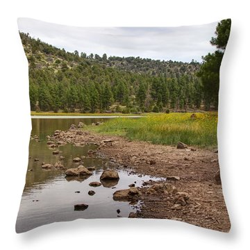 Northern Arizona Throw Pillows